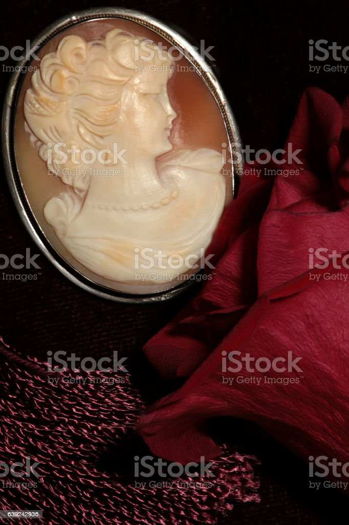 cameo and red rose macro shot stock photo