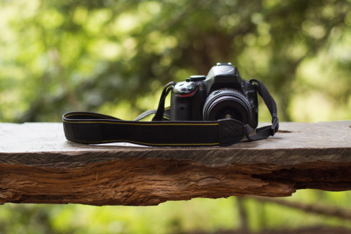 A camera in a bench in the forest