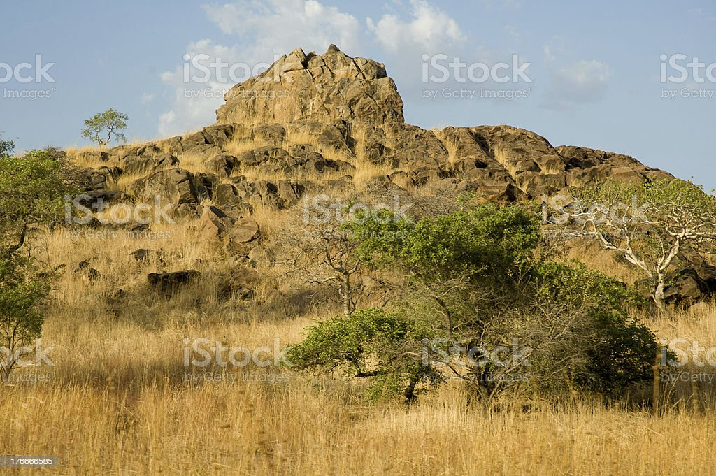 Cameroon savannah royalty-free stock photo