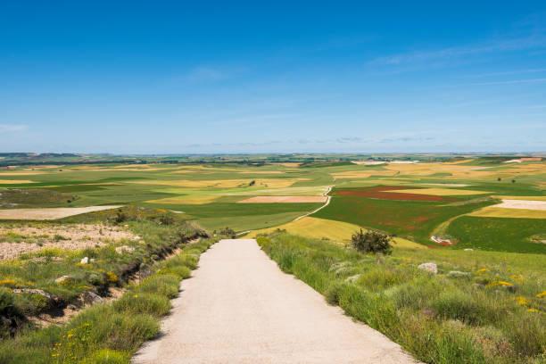 Camino de Santiago path viewed from the Alto de Mostelares in Spain stock photo