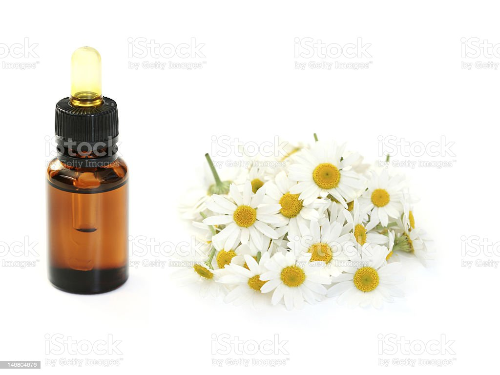 camomille essential oil stock photo