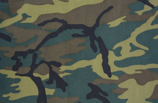 camouflage background camouflage background camouflage stock pictures, royalty-free photos & images