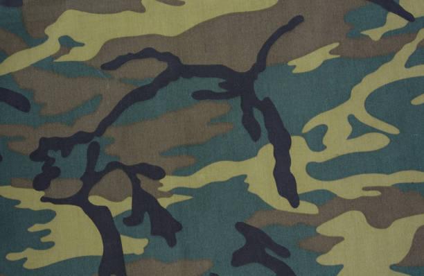 camouflage background - kamuflaż zdjęcia i obrazy z banku zdjęć