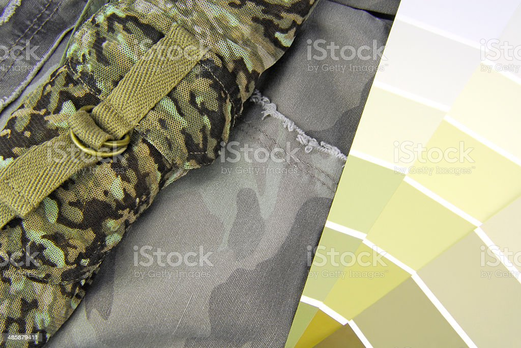 camouflage color chart for interior stock photo