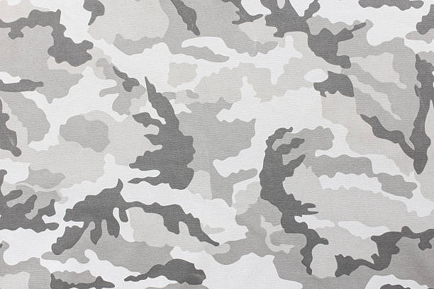 Camouflage pattern and background. Camouflage pattern and background. camouflage stock pictures, royalty-free photos & images