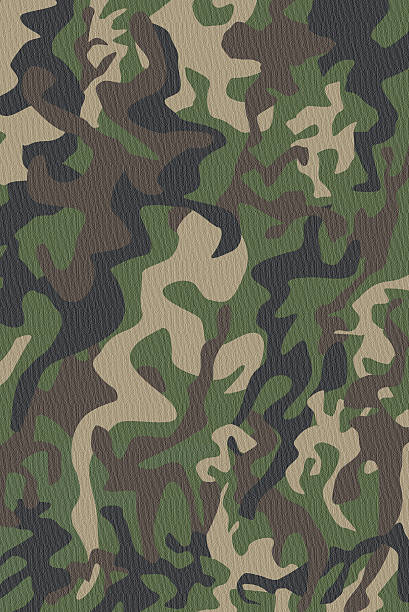 Camouflage Pattern  camouflage stock pictures, royalty-free photos & images