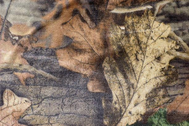 camouflage - chasser photos et images de collection