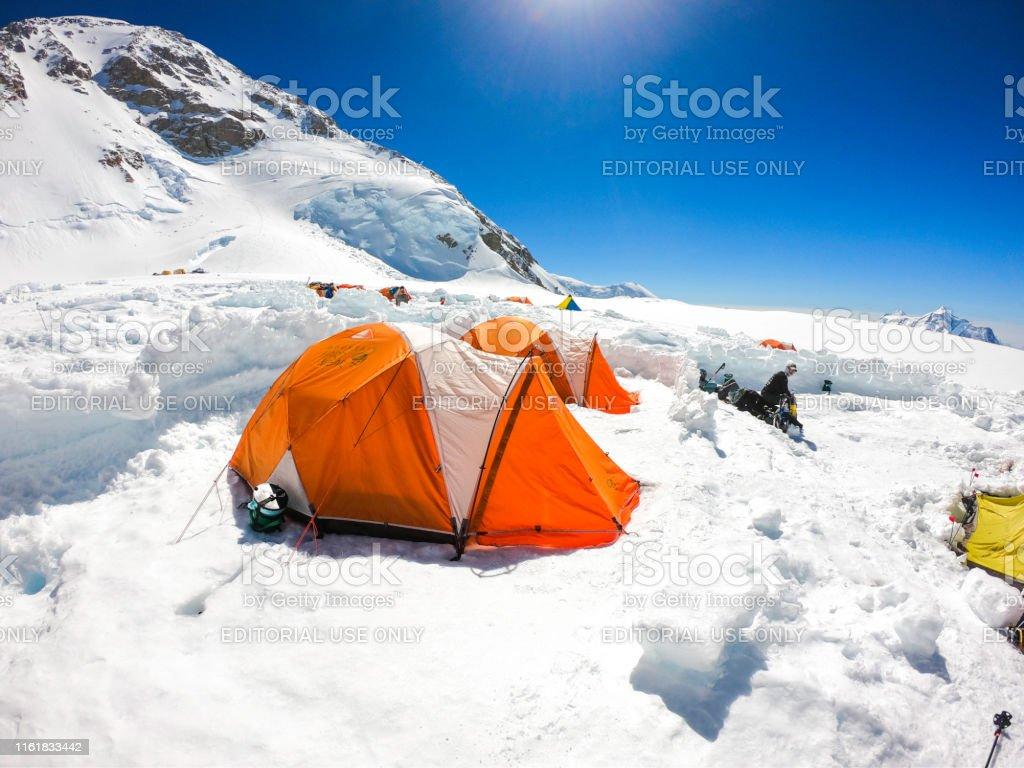 Denali National Park, Healy, Alaska, USA - June 28 2019: Denali is...