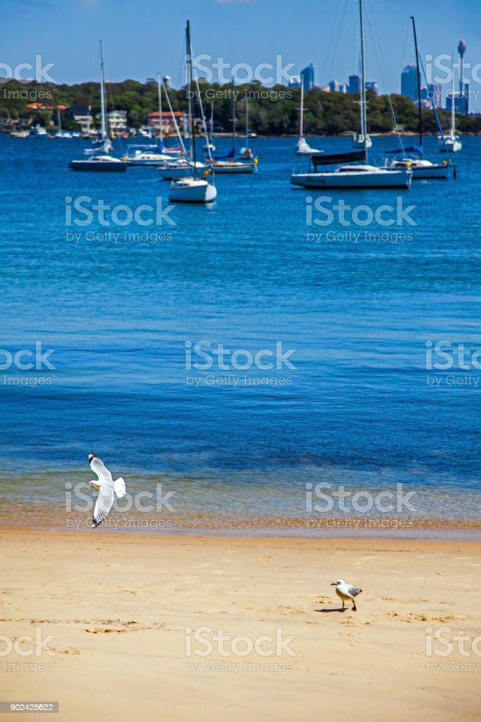 Camp Cove Beach in Sydney New South Wales Australia stock photo