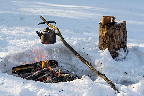 Camp fire in winter stock photo