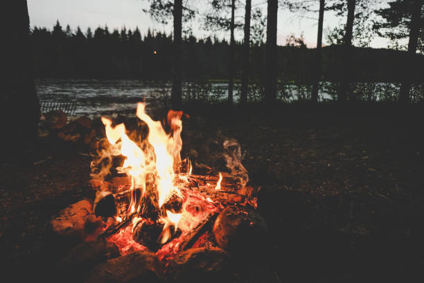 camp fire on a swedish river - falò foto e immagini stock
