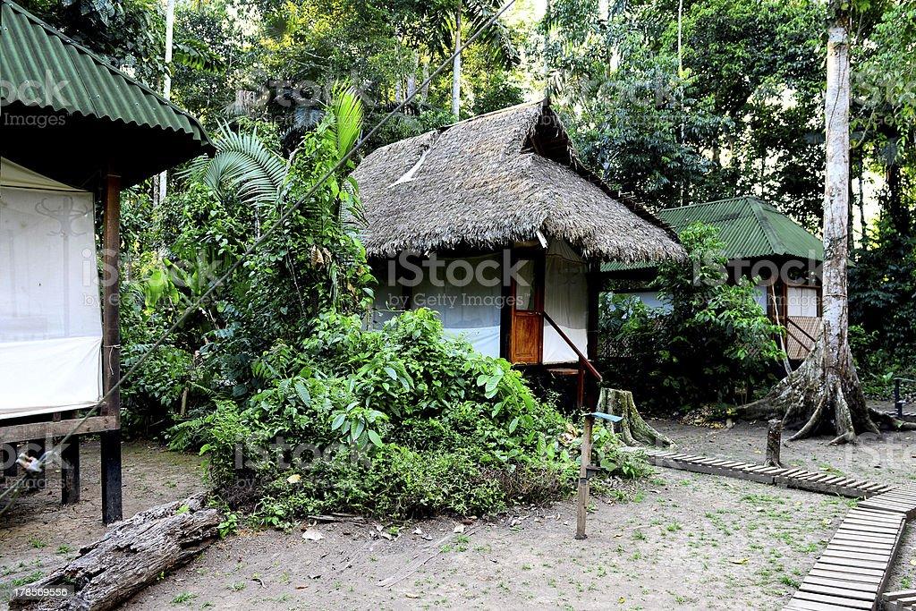 Camp in the jungles of Peru stock photo