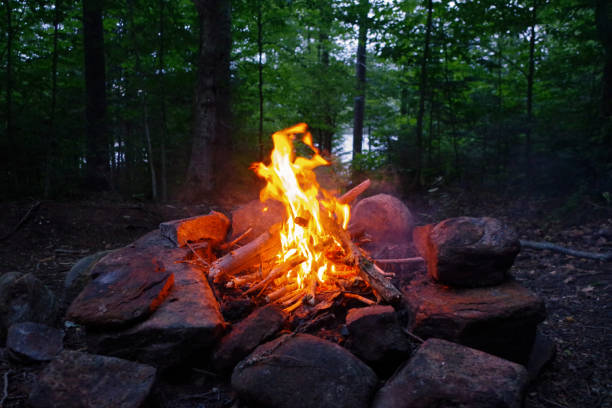 campfire at camp in the adirondack mountains of upstate new york. - wilderness stock pictures, royalty-free photos & images