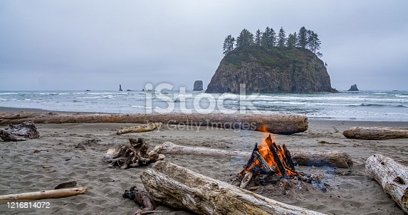istock Campfire at First beach, Olympic national park 1216814072