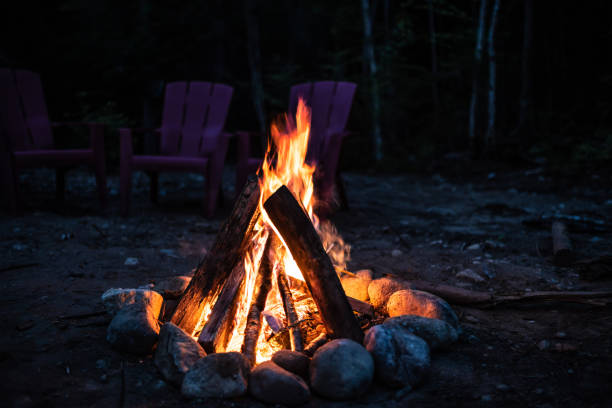 Campfire at night in the woods stock photo