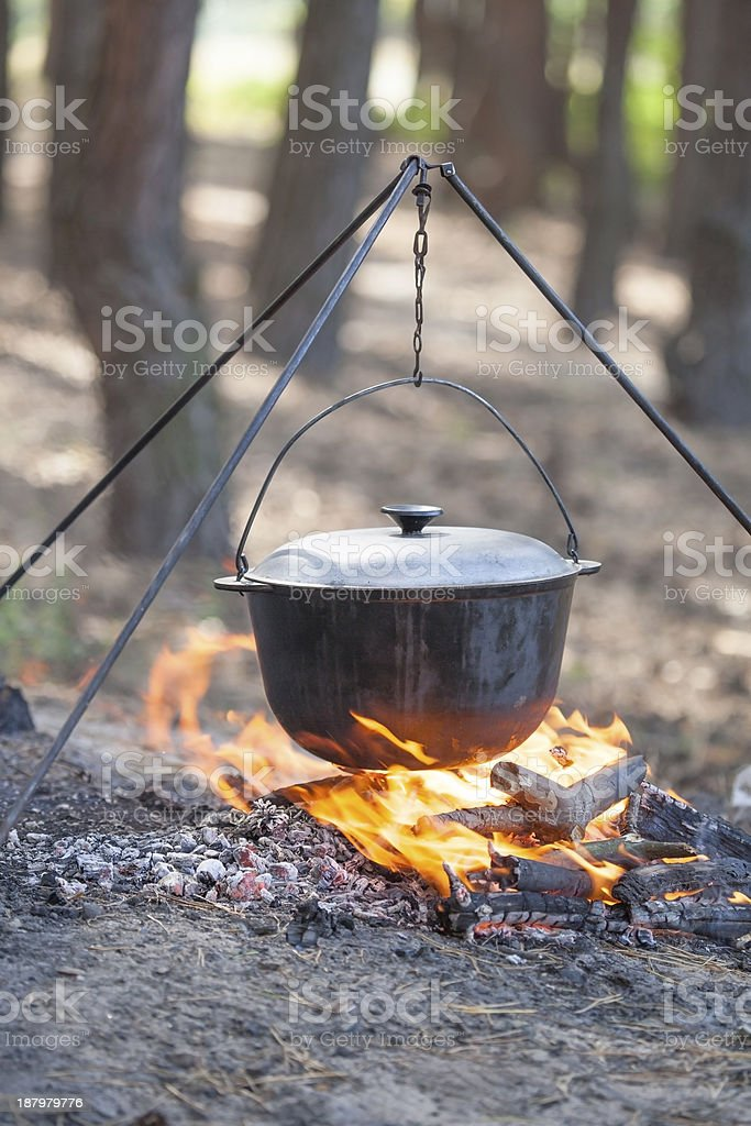 Campfire cooking. stock photo