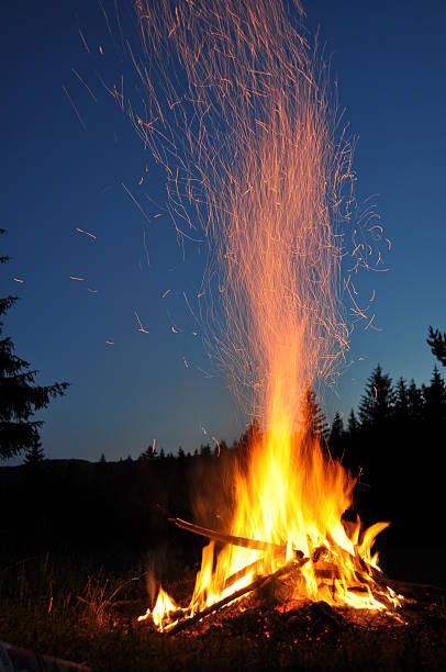 Campfire in the forest stock photo
