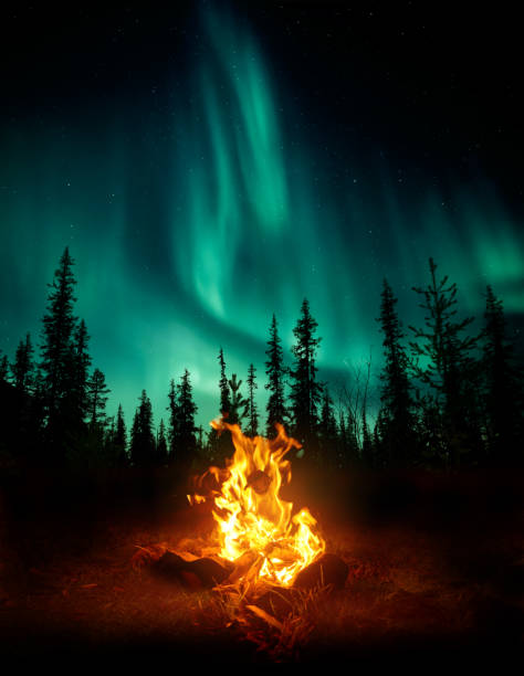 campfire in the wilderness with the northern lights - nord foto e immagini stock