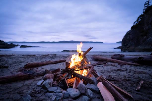 campfire on remote winter beach, vancouver island, british columbia, canada - falò spiaggia foto e immagini stock