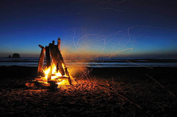 campfire on shi-shi beach campfire on shi shi beach, olympic national park bonfire stock pictures, royalty-free photos & images