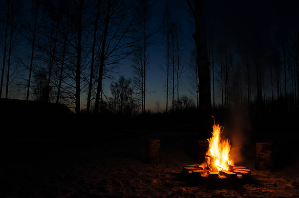 fuoco di accampamento  - falò foto e immagini stock