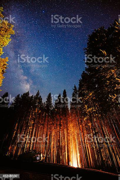 Photo of Campfire under the stars