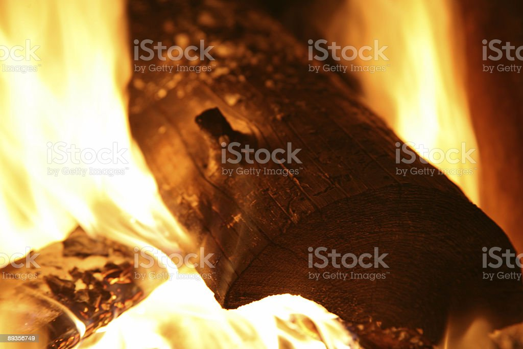 Campfire - Wood Burning Flames royaltyfri bildbanksbilder