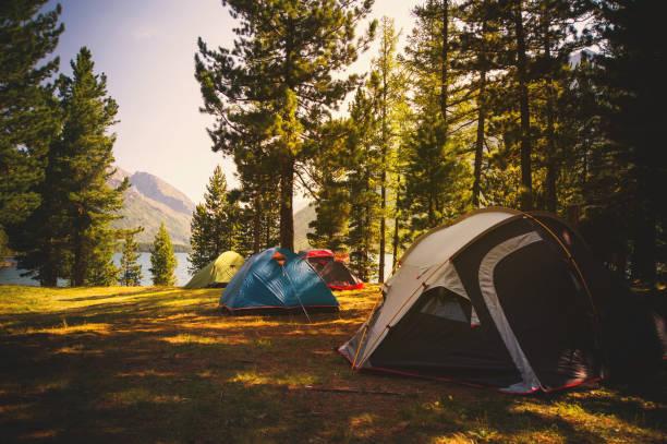 camping in de herfst taiga in siberië - altai nature reserve stockfoto's en -beelden