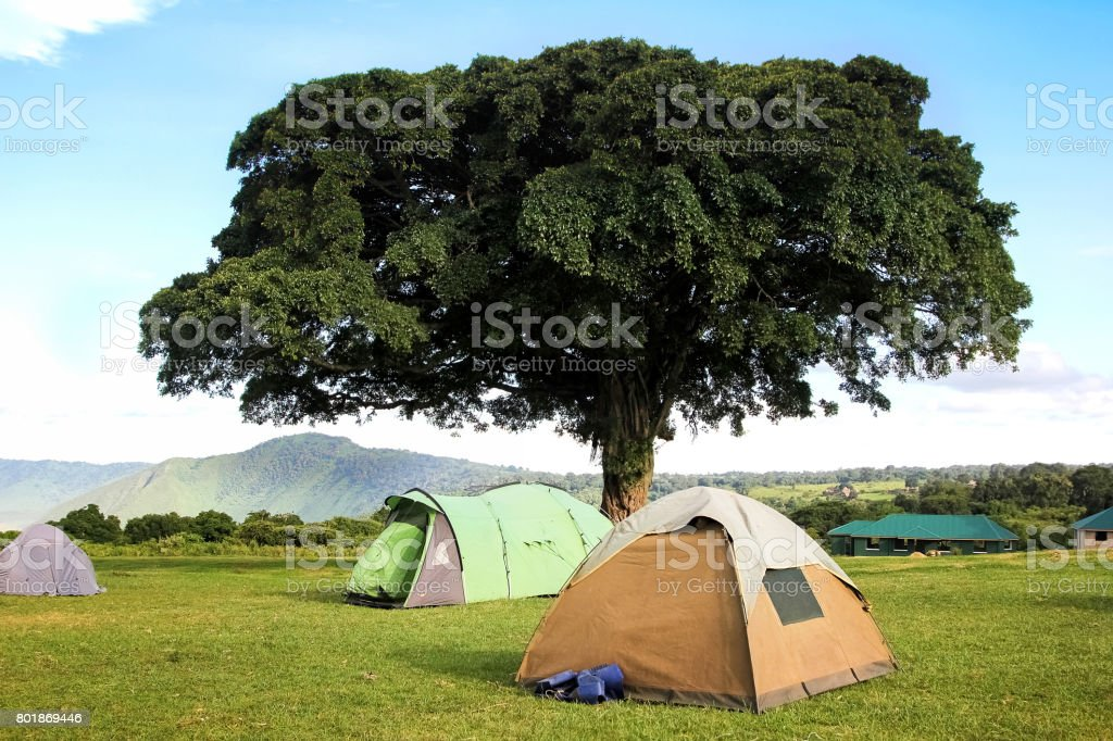 Campground in the mountains of the Ngorongoro crater . Africa. Tanzania. stock photo