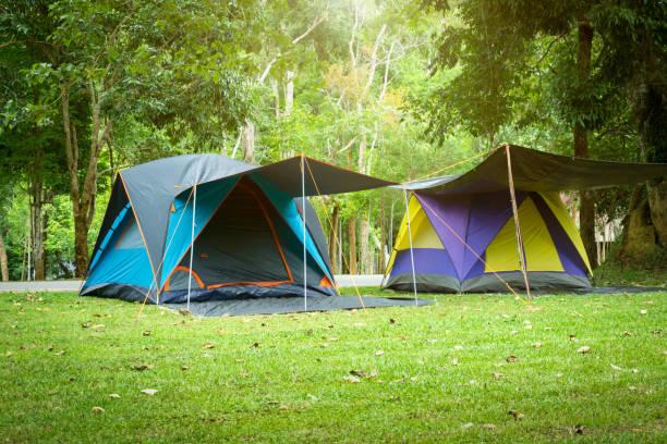 Camping und Zelt unter – Foto