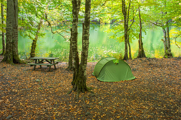 camping at yedigoller national park mengen bolu turkey - 볼루 뉴스 사진 이미지