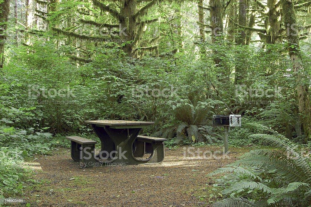 Camping bench stock photo