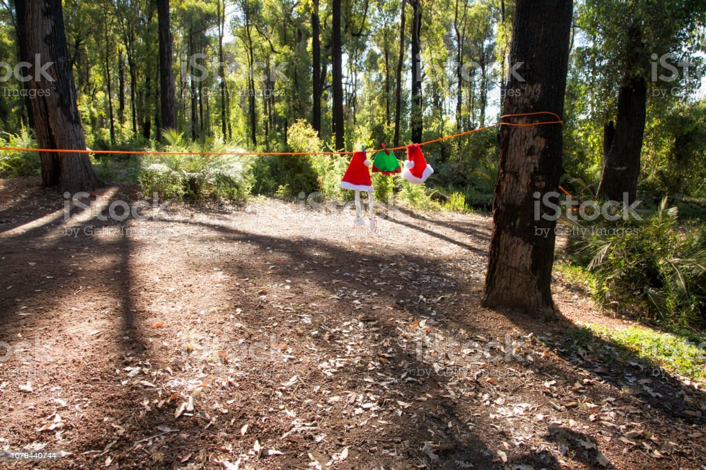 Christmas Camping Australia.Camping Christmas Australia Stock Photo Download Image Now