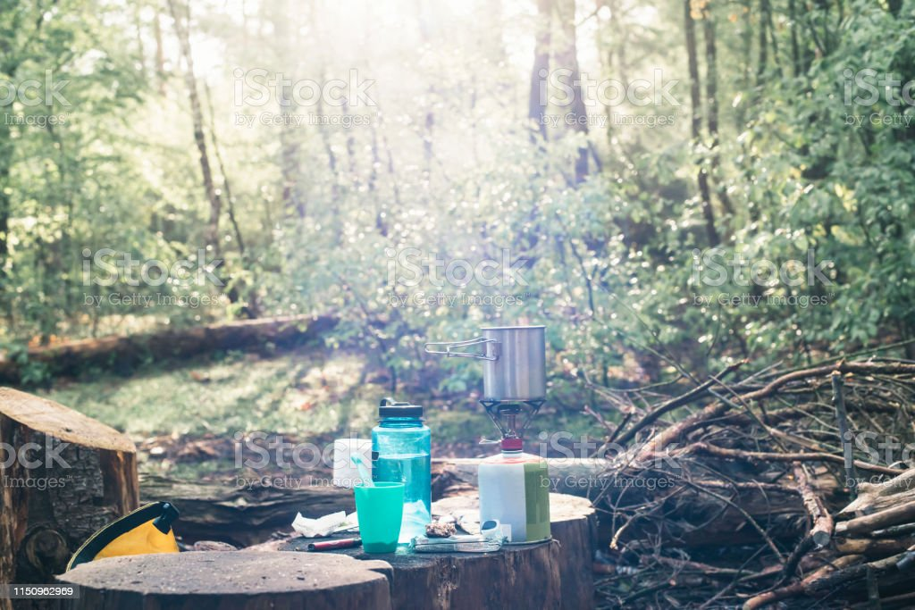 Camping gas on tree stump in sunny forest in spring.