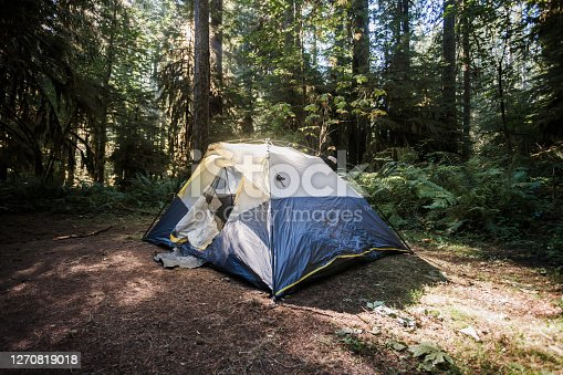 Image of a tent set up in a Pacific Northwest forest, in Washington, the Gifford Pinchot national forest.