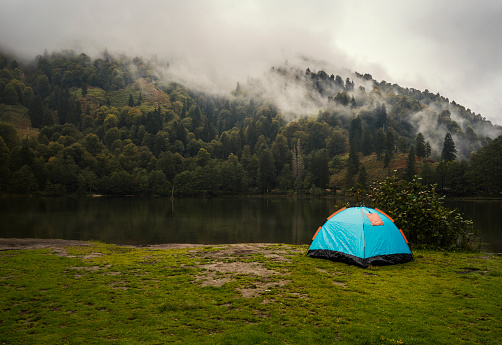 Camping tent in pine tree forest by the lake near Artvin, Turkey\