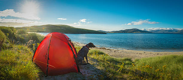 Camping on idyllic beach dunes overlooking ocean island panorama stock photo