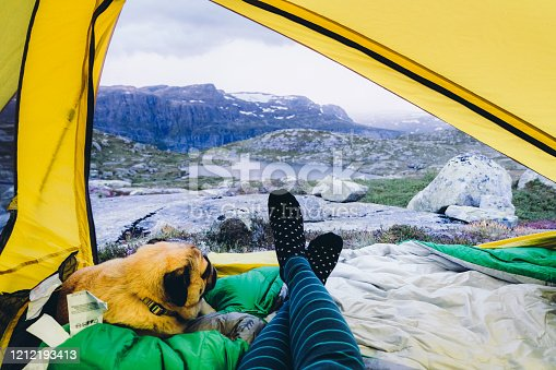 Woman and her small dog - pug breed relaxing in their tent looking at the scenic view of the mountains in Norway