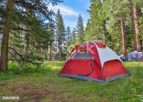 Forest campsite with tents