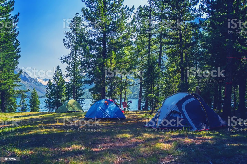 Camping tent in campground at national park. royalty-free stock photo