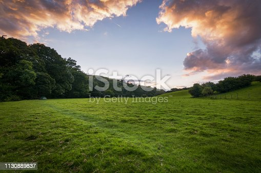 Green lush meadow in England with tent to shelter at sunset