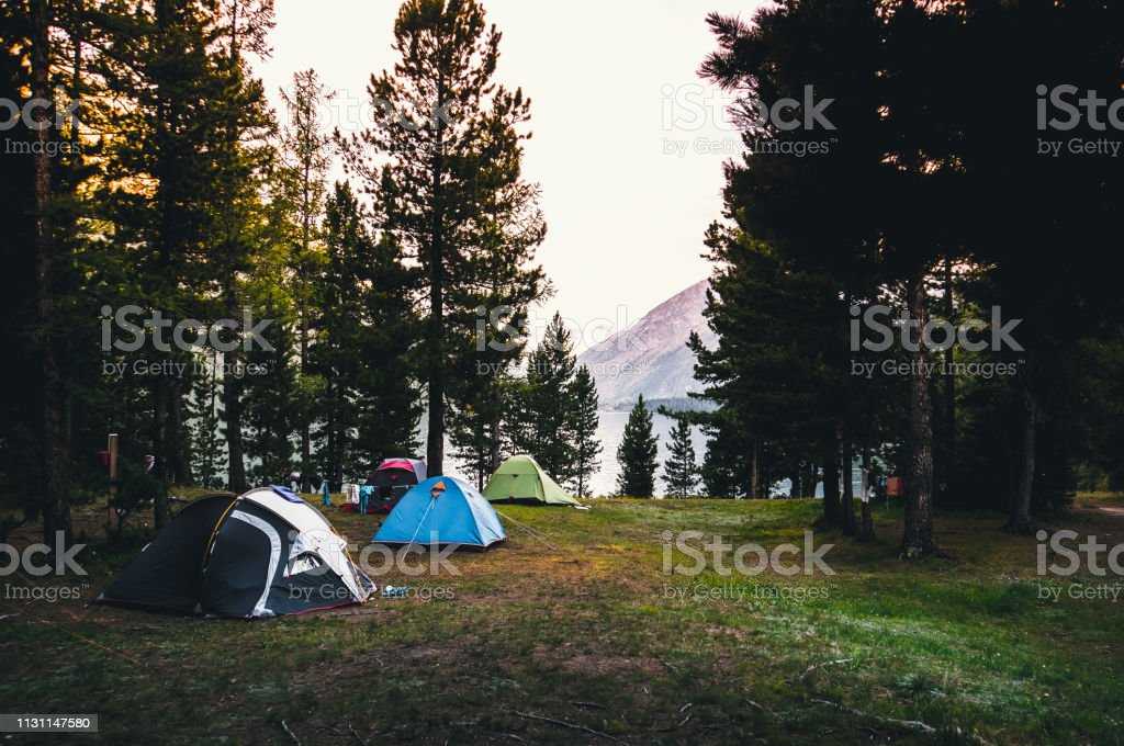Camping tent on green grass beside lake with foggy stock photo