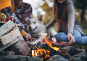 Two cute women and dog, sitting next to the campfire, in a front of tent, roasting marshmallow