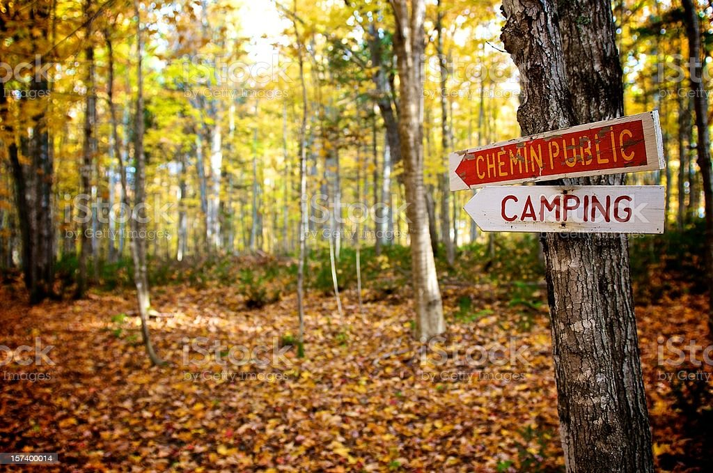 Camping trail - Forest in Autumn royalty-free stock photo