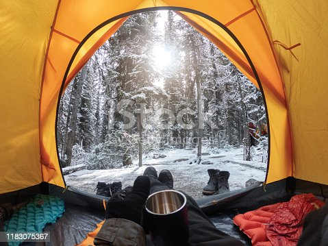 Camping with hand holding cup in yellow tent with snow in pine forest at Yoho national park