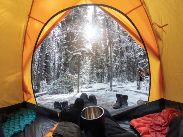 Camping with hand holding cup in yellow tent with snow in pine forest stock photo