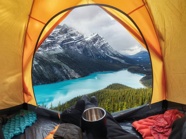 Camping with holding cup in yellow tent open with Peyto Lake in Icefields Parkway stock photo