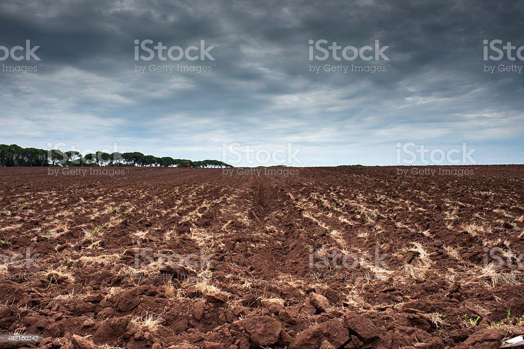 campo arato stock photo