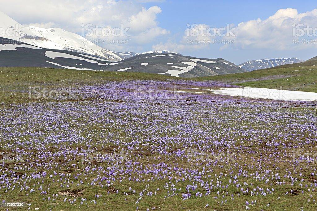 Campo Imperatore in Province of L'Aquila, Abruzzo Italy royalty-free stock photo