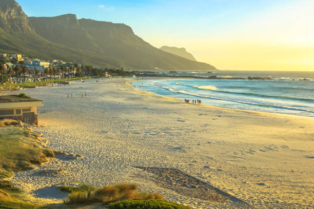 camps bay beach - cape peninsula stock pictures, royalty-free photos & images